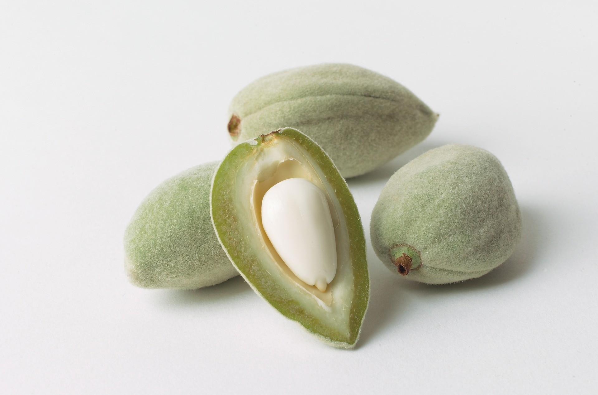 raw almond, amande cru