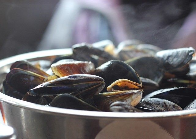 mussels-811759_640