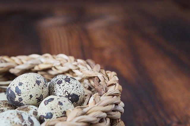 quail-eggs-oeux-cailles