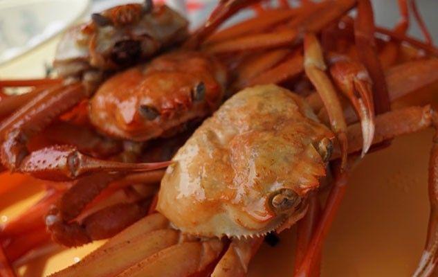 crab-1033446_640
