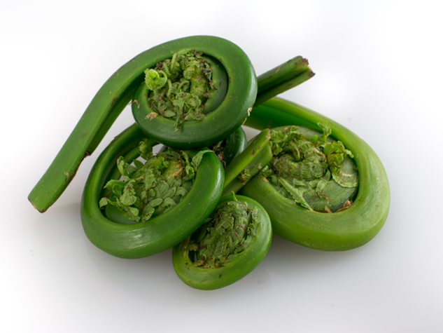 Let's Celebrate Spring with Fiddleheads