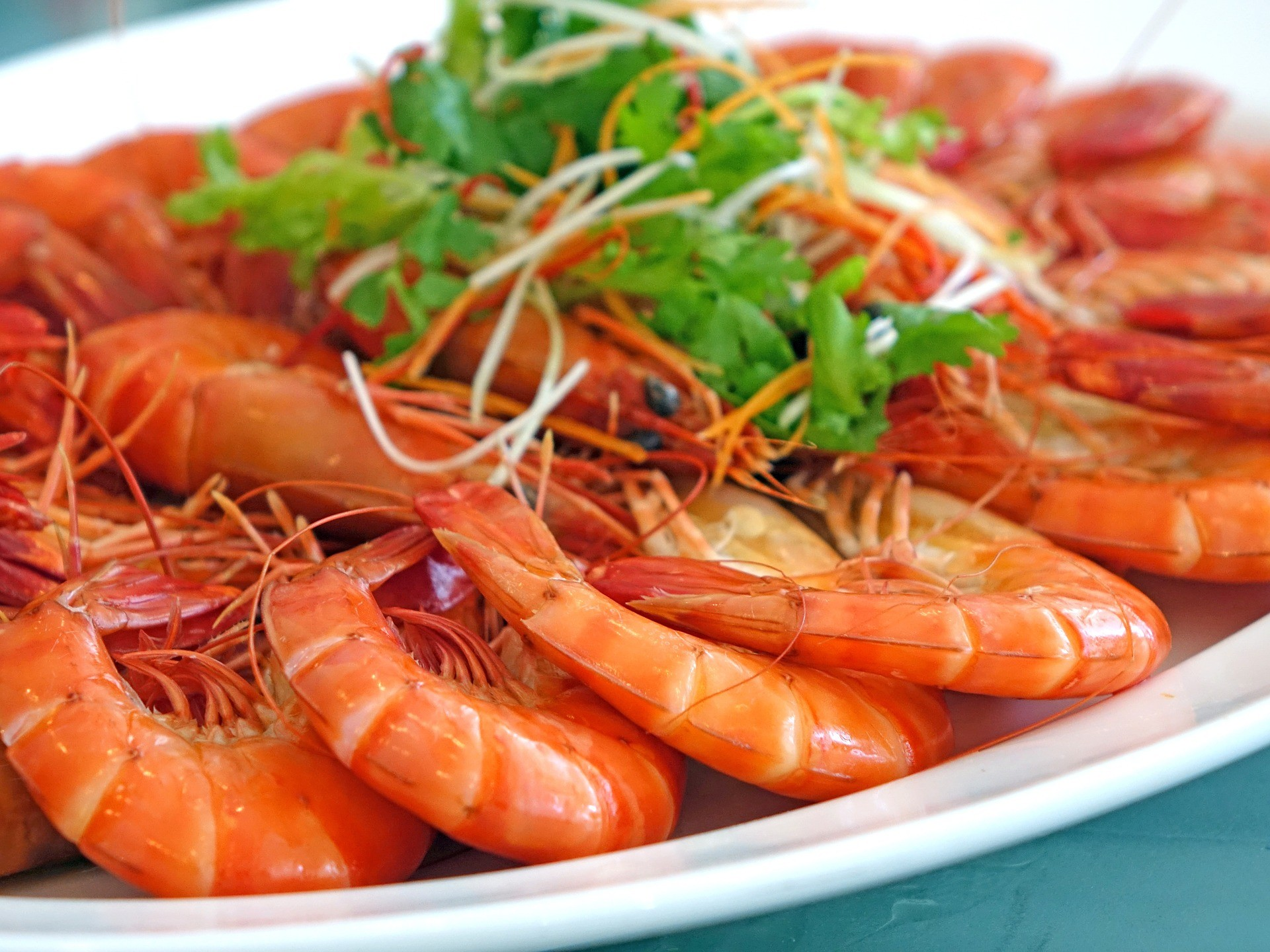 prawn shrimp crevettes