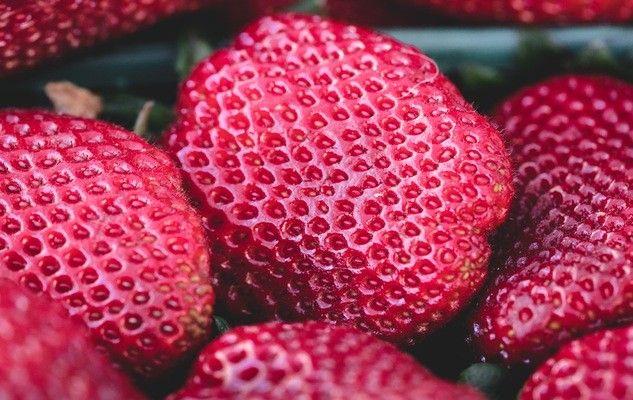 fraises-strawberries