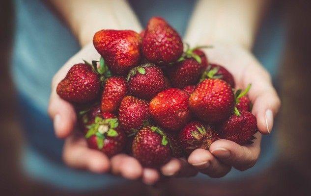 Fruitful visits!
