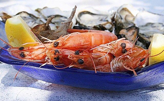 shrimp-crevettes