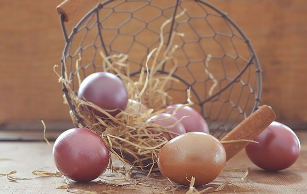 egg-1234652_640