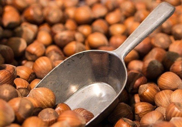 hazelnuts-noisettes