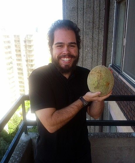 vincent-melon