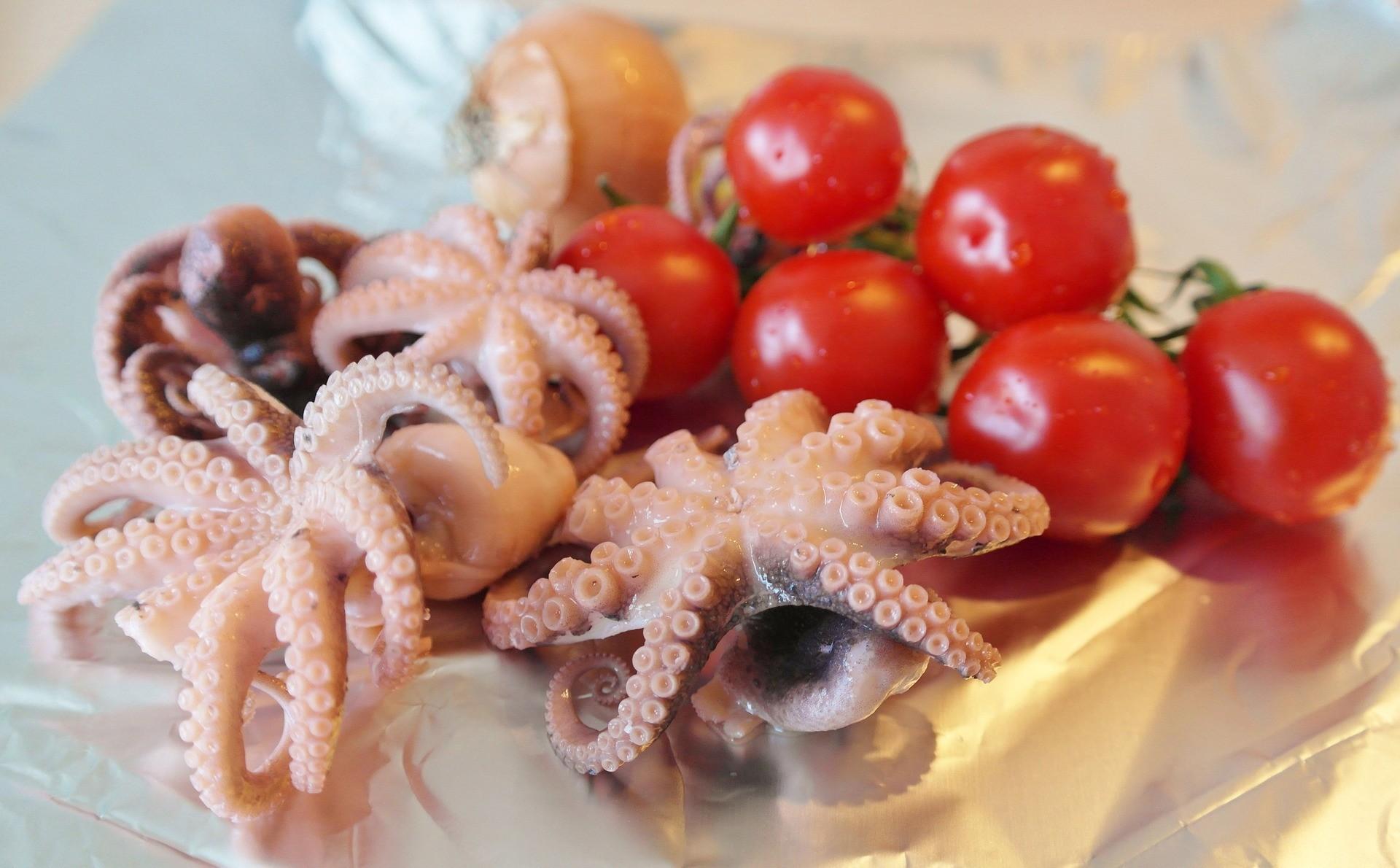 octopus, pieuvre