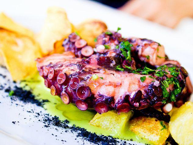 squid pieuvre octopus