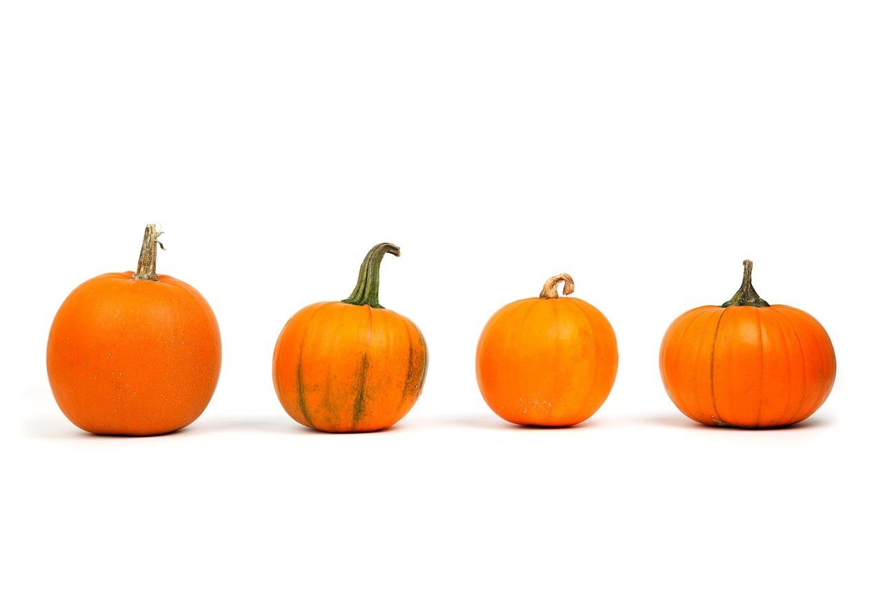 Choses à faire avec votre citrouille d'Halloween