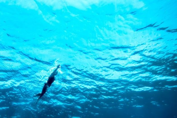 SOSCuisine/Swimming