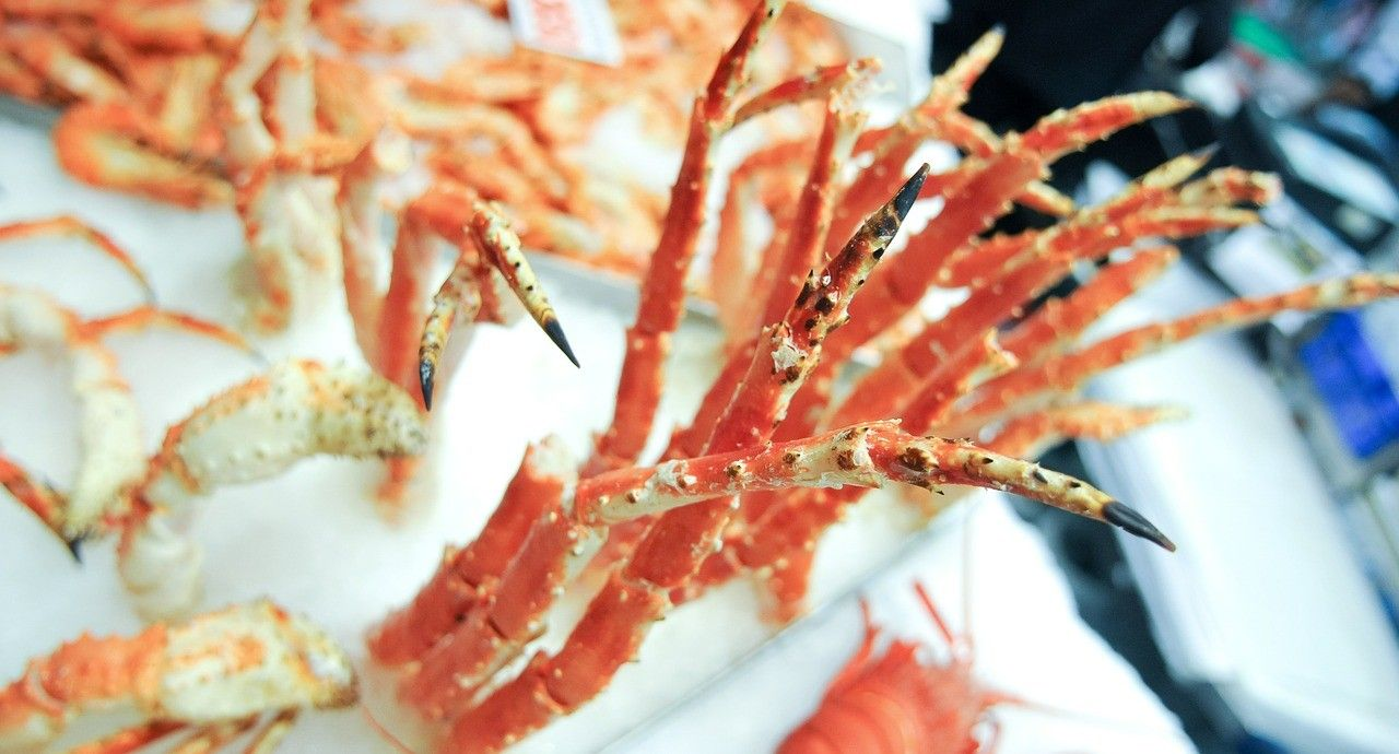 Snow crab season is back
