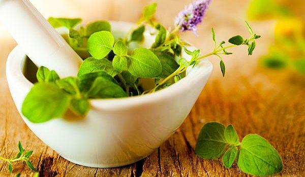plantes_beaute_sante_bien_etre_remedes_naturels
