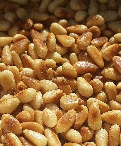 pine nut pignon de pin