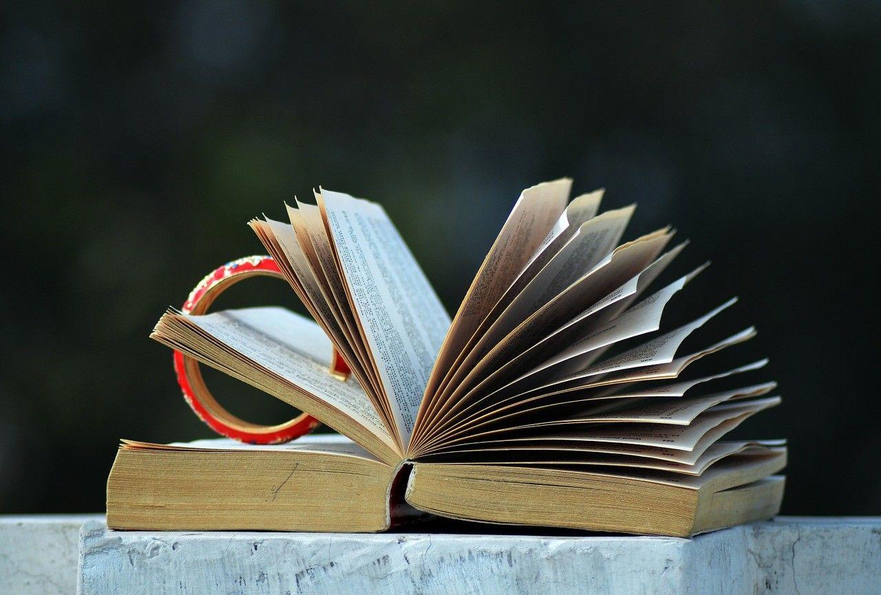 reading, lecture, novel, roman