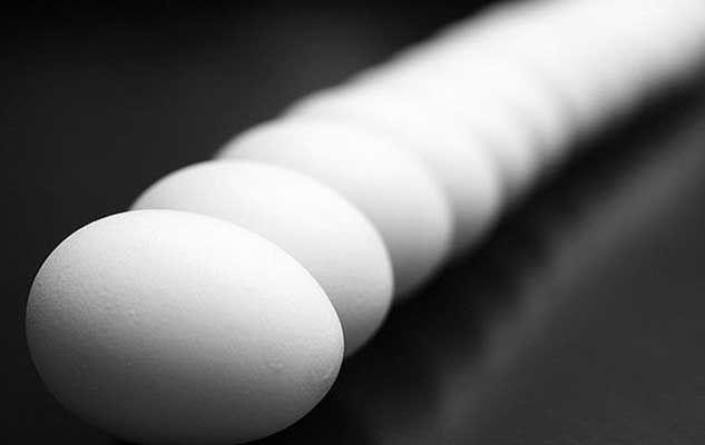 egg-52915_640