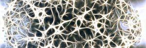 Les origines de la maladie d'Alzheimer