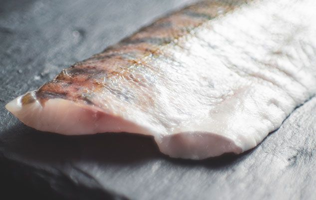 fish-fillet