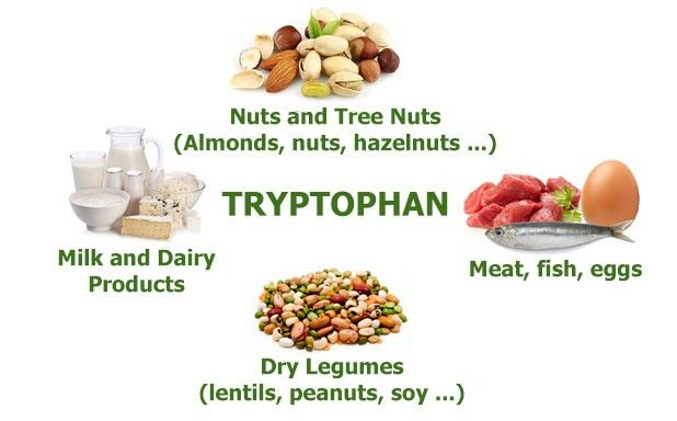 Foods High In Serotonin And Tryptophan