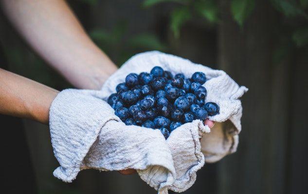 blueberries bleuets