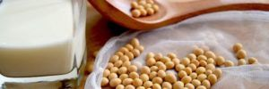 Is it Risky to Eat Soy?