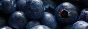 Top 5: Recipes to Enjoy the Blueberry Season