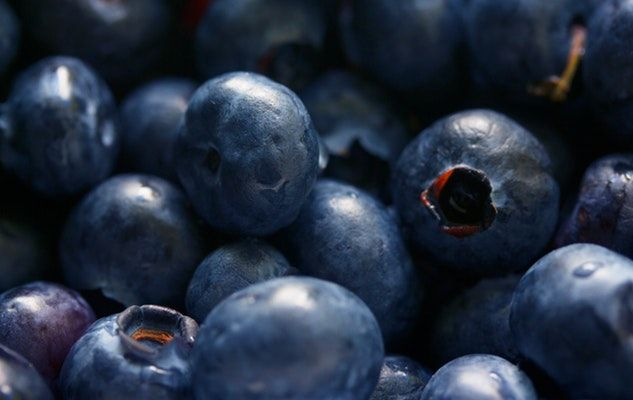 bleuets blueberries
