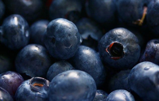 bleuets blueberries