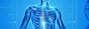 L'allenamento vibratorio per prevenire l'osteoporosi
