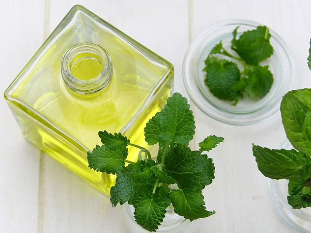 Food Mint Oil Essential Oils Leaf Herb Healthy Peppermint Oil