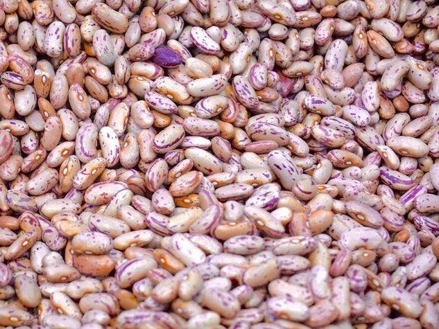 beans lectines légumineuses